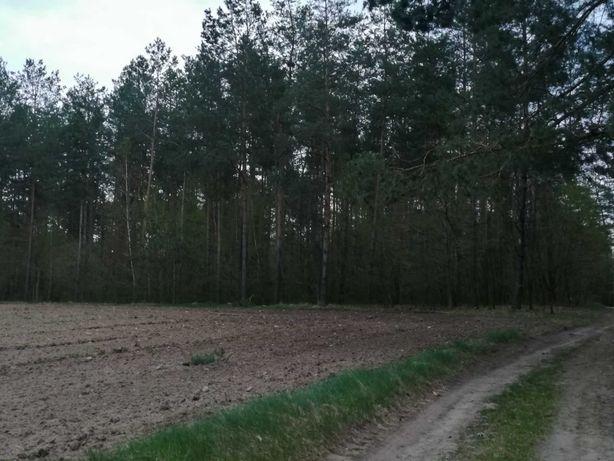 Działka leśno- rolna z podłożem żwirowym