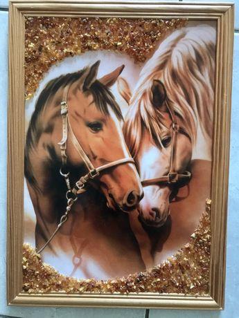 Obrazek koni