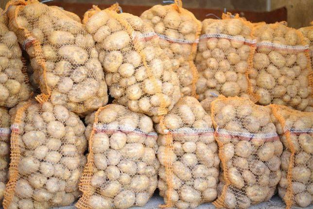 Ziemniaki jadalne bardzo smaczne worki 15 kg