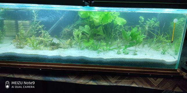 Продам аквариум 220л