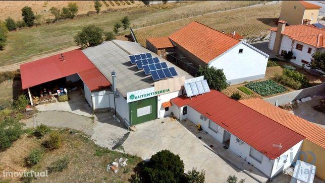Loja - 998 m²