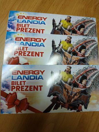 Bilet do Energylandii jednodniowy ulgowy