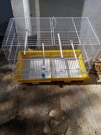 Acecorios para aves