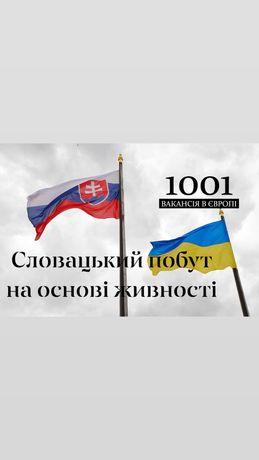 Словацький побут на основі підприємця