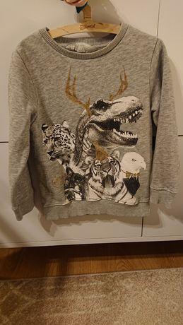 H&M 110/116 bluza dresowa zwierzęta szary melaż