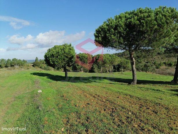 Fantástico terreno rústico para moradia T4 térrea isolada...