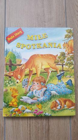Książka dla dzieci Miłe Spotkania