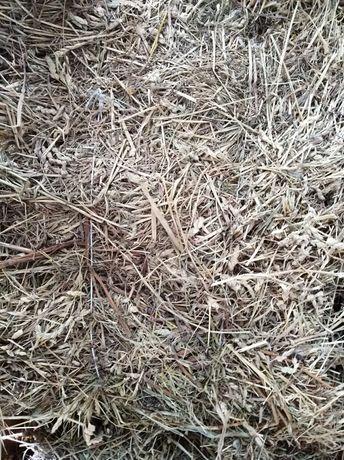 Садова трава в тюках новий укіс гарне сіно 15-20кг