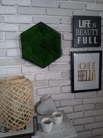 Obraz mech poduszkowy,dekoracja mech,panel,heksagon