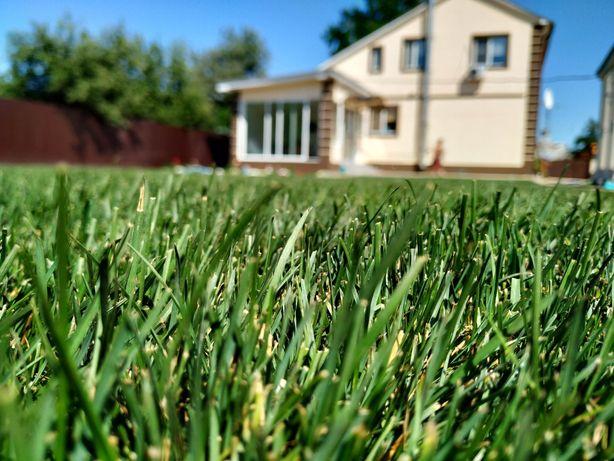 Рулонный газон. Газон в рулонах