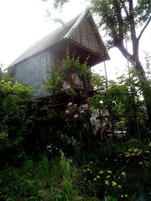 дача и огород соловьиная роща Запоріжжя - зображення 1