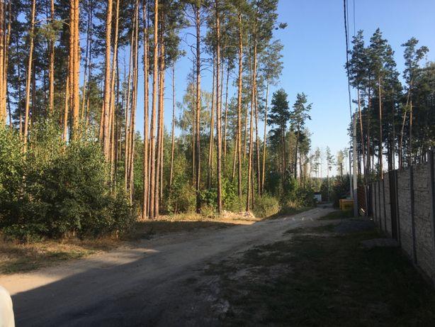 Ділянка під житлову забудову, с. Пряжів