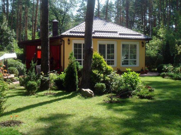 ДОМИК В ЛЕСУ.Загородный отдых под Киевом в сосновом лесу возле моря.