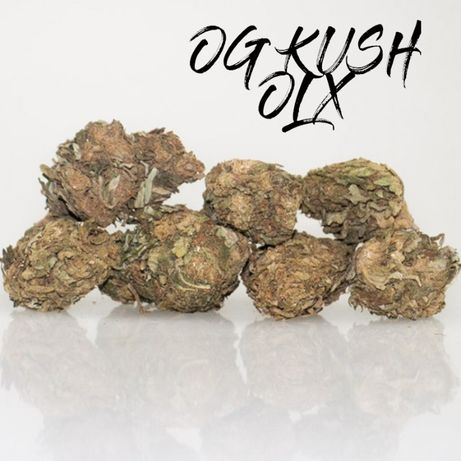 5 Gram Cherry Haze 20% Marihuana Susz CBD LEGALNA Małe Topki PROMO
