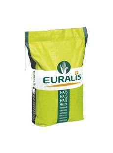 Насіння кукурудзи ЕС Хемінгуей Euralis Semences ФАО 280
