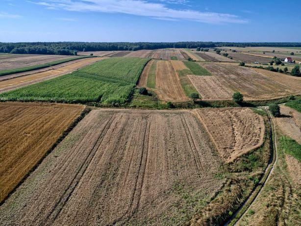 Alternatywa dla Działkowców, działka rolna 11 arów