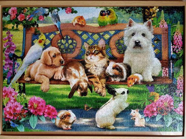 Pets in the park, puzzle, Castorland, 1000 elementów