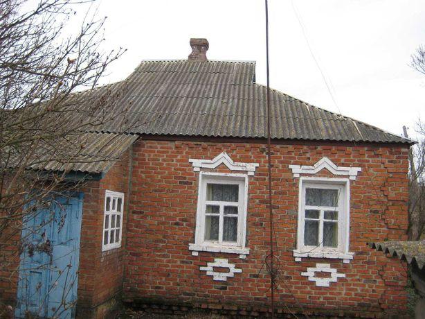 Житловий будинок в с. Стара Водолага
