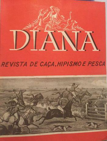 Diana revista de caça,hipismo e pesca
