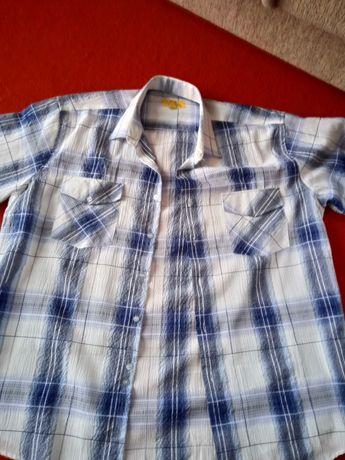 Koszula męska z krótkim rękawem.
