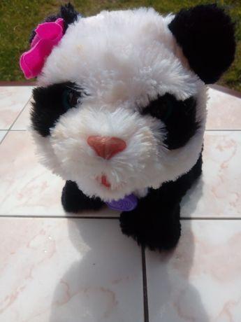 Interaktywna panda POM POM