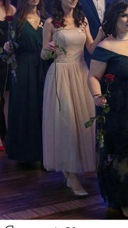 Suknia wieczorowa Next