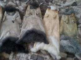 Шкурки кроля кролика не вычиненные дорого
