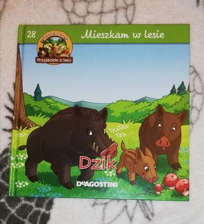 Mieszkam w lesie Dzik 28 książka dla dzieci Deagostini