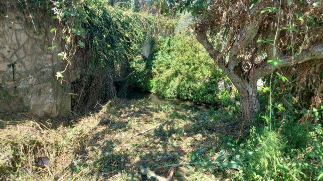 Faço jardins , abate de árvores limpezas com rusadora