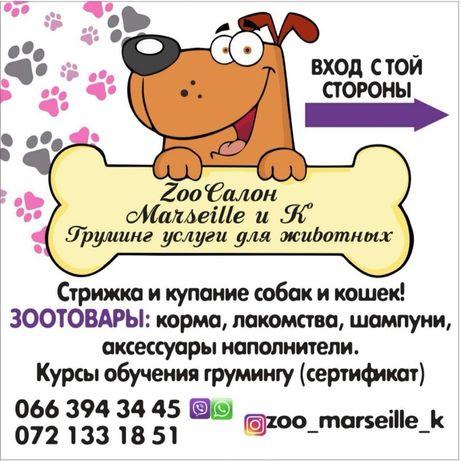 Зоосалон Marseille и К!Стрижка собак и кошек!