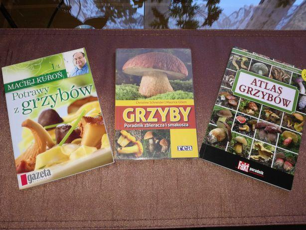 3 Książki dla pasjonata grzybobrania