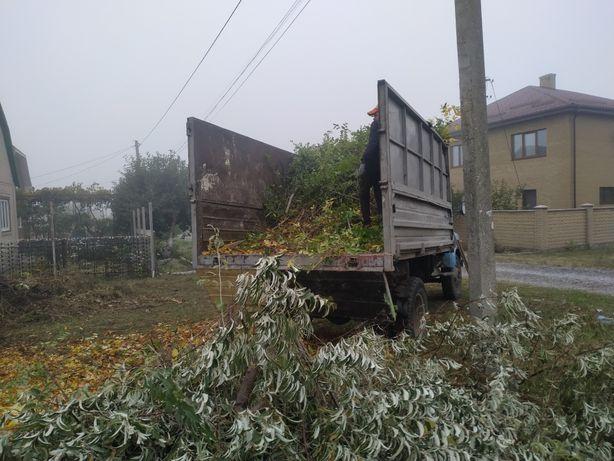 Уборка участка,Корчевка пней, Спил дерева,Вывоз мусора веток, листьев