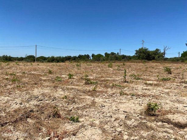Terreno com 2.2 ha perto da Vila de Cabeção