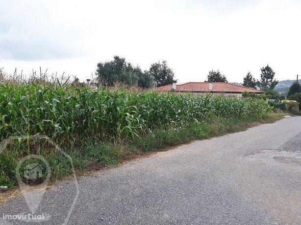 Terreno Construção em Valongo do Vouga