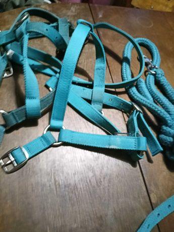 2 kantary niebieskie i uwiąz