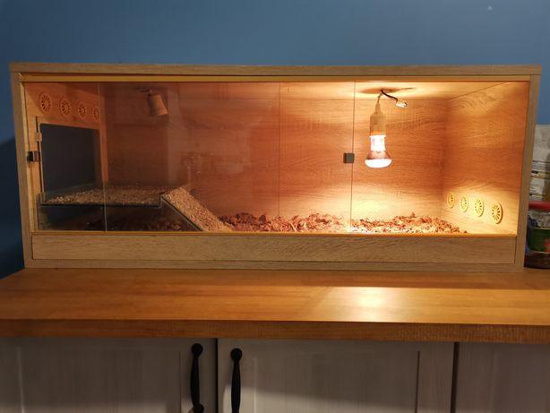 Terrarium zestaw dla agamy gekona jeża żarówka środek do dezynfekcji