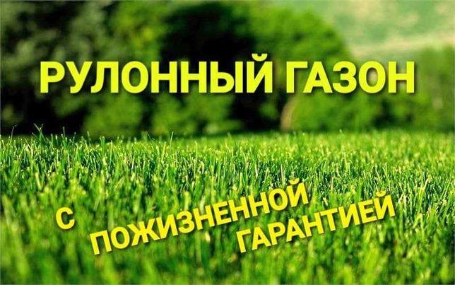 Газон в рулонах – живая трава за 1 день / рулонный газон + автополив