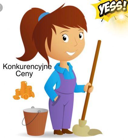 Usługi sprzątania