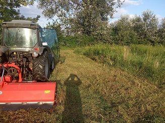 Koszenie, mulczowanie poplonów i ściernisk po kukurydzy