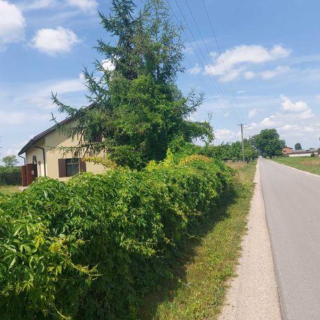 Dom do rozbudowy w okolicy Łodzi