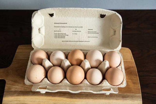 Wiejskie jajka kurze