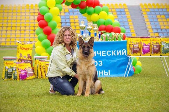 Дрессировка собак. Кинолог Илона Бережная