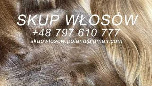 Skup włosów gotówka od ręki