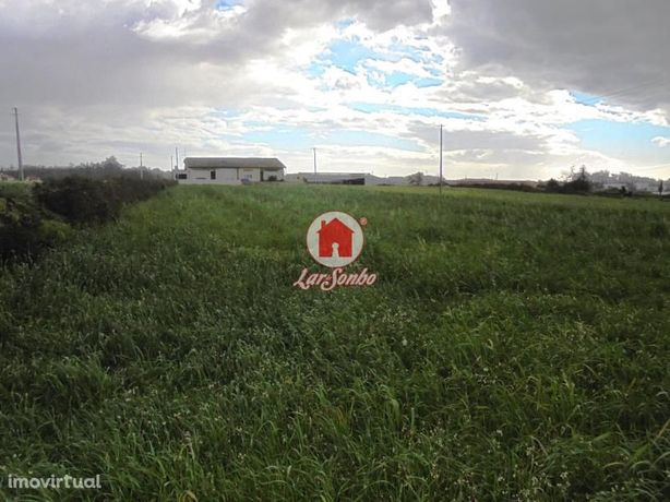 Terreno Agrícola para arrendar em Aveleda - Vila do Conde
