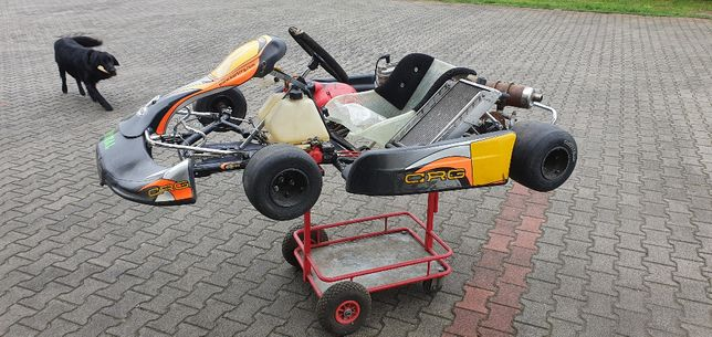 Gokart CRG silnik IAME Direct dwusuw + wózek i części