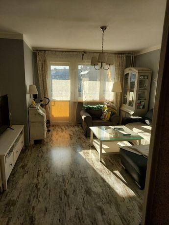 Mieszkanie na wynajem 64m