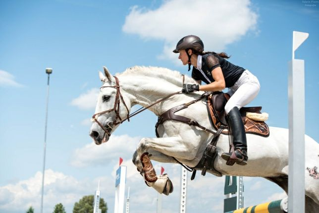 Koń o wybitnym ruchu!skoki.tüv.super charakter  Andaluz PRE