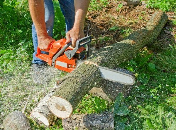 Поріжу дрова.Зріжу дерево.порізка.моя бензин і все решта.