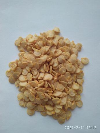 Семена перца болгарського насіння перцю перець