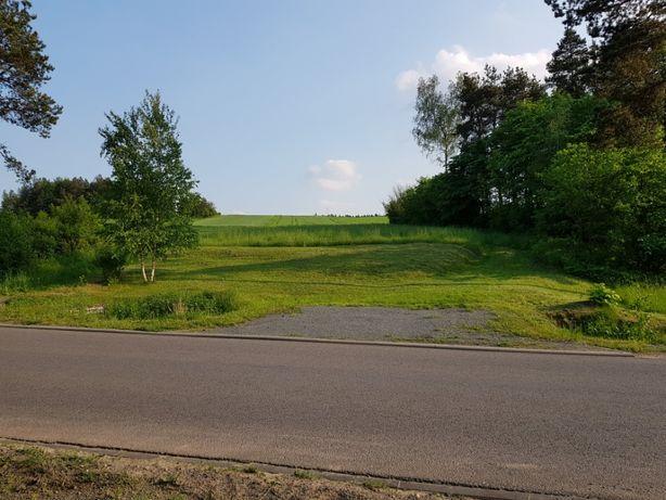 Sprzedam działkę rolno - budowlaną na Jurze Krakowsko-Częstochowskiej